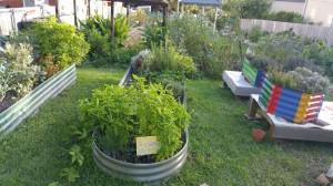 Community Garden March 2016