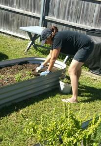 New Planter